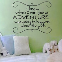 I knew when I met you an adventure was going to happen. Vinyl Wall Art Decal for child's room or baby nursery.