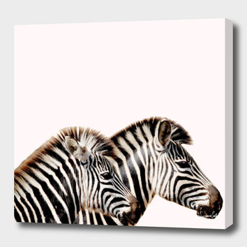 «zebras» Canvas Print by Suzanne Carter - Numbered Edition from $59 | Curioos