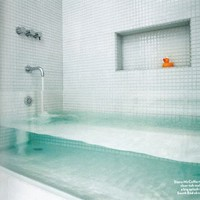 For the Home / Clear bathtub! Awesome!