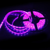 Susay® 5M Waterproof IP65 300 LED 3528 SMD Flexible LED Light Lamp Strip Purple DC 12V