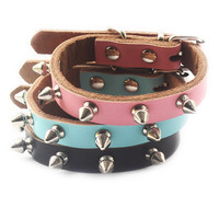 Leather Studded Collar for Your Cat or Dog