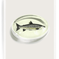 Vintage Fish Crystal Oval Paperweight