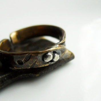 Nest with Me Brass & Sterling Silver Unisex Relic by patinaware