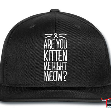 Are You Kitten Me Right Meow Snapback