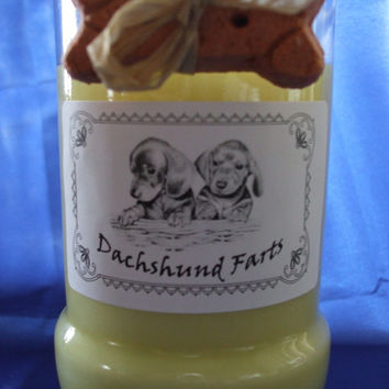 Dachshund Farts Candle in a Recycled Liquor Bottle - 10oz