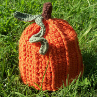 Handcrafted Crochet Pumpkin / Autumn Hat for Baby or Child