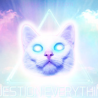 Question Everything - 8x10 Print