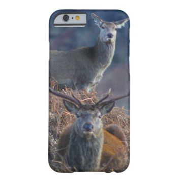 red deer iPhone 6 case