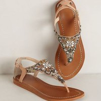 Desert Lily Sandals by Deepa Gurnani Neutral Motif