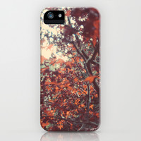 Autumn iPhone & iPod Case by Teal Thomsen Photography