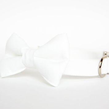 Wedding Bow Tie Dog Collar in White