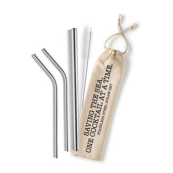 Set of Stainless Steel Straws with Bag and Cleaning Brush