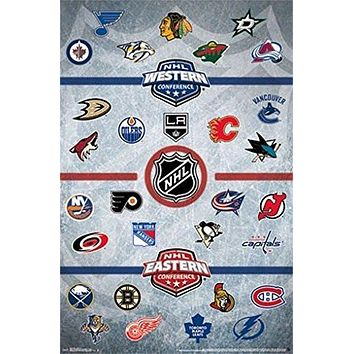NHL LOGOS POSTER Amazing Collage RARE HOT NEW 22x34