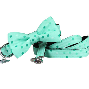 Dog Collar, Bow tie and Leash Set : Spotty Mint Green