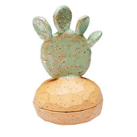 Lake Sharp - Paddle Cactus Box