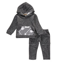 New Toddler Infant Baby Girl Boy Hooded Long Sleeve Sweatshirt Tops Pants 2pcs Outfit Set Tracksuit Casual Clothes