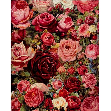Rose oil painting by numbers digital painting  flowers pictures wall art frame less