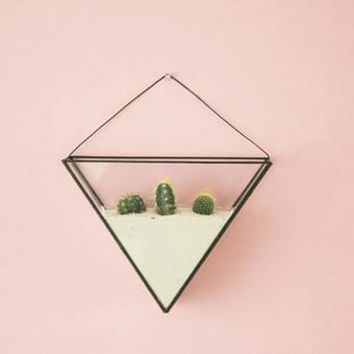 Geometric wall terrarium including terrarium kit -
