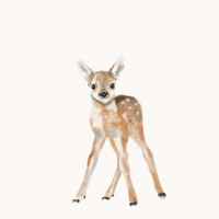 Watercolor Fawn Stretched Canvas by Rachel Lewis | Society6