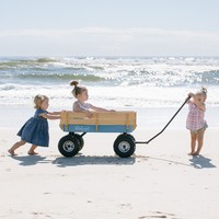 Beach Cart Wagon