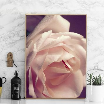 Posters And Prints Beautifully Orange Roses Flower Poster Nordic Canvas Painting Wall art Pictures For Living Room decor