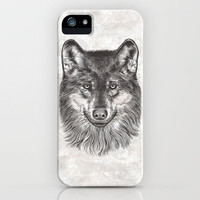 Canis Lupus (Gray Wolf) iPhone Case by Rachel Caldwell | Society6