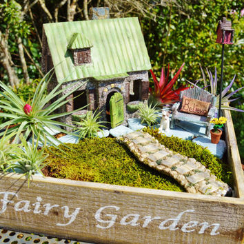 Fairy Garden Cottage ~ House with Swinging Door ~ Walkway and Stones ~ Bench and Dog ~ Moss ~ 8 airplants ~ Wooden Fairy Garden Planter