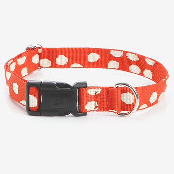 Specktacular Dog Collar