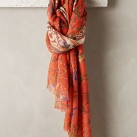 Pergola Scarf by Pashma Orange One Size Scarves