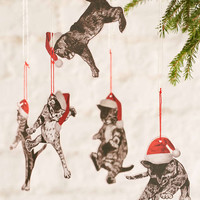 Falling Cats Ornament Set - Urban Outfitters