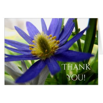 Nature Photo Blue and Yellow Wildflower Thank You Card