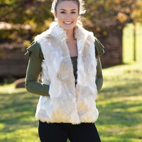 Fur What Faux Fur Vest