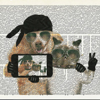 Dicrionary Art Print Cat & Dog Selfie on Upcycle Vintage Page Dictionary Art Book Print Art  Print Collage Print