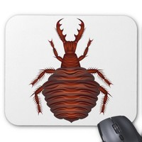 Ant-lion Mouse Pad