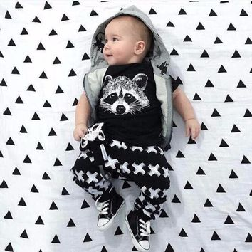 Raccoon Pattern Newborn baby set boys clothes set  Kids Baby Boys Outfits T-shirt Tops+Pants Clothes Set