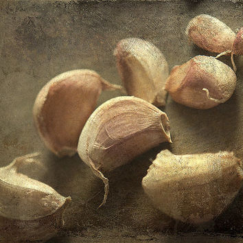 Food photography still life photography garlic photo print rustic kitchen art  wall art wall decor fine art print beige green brown texture