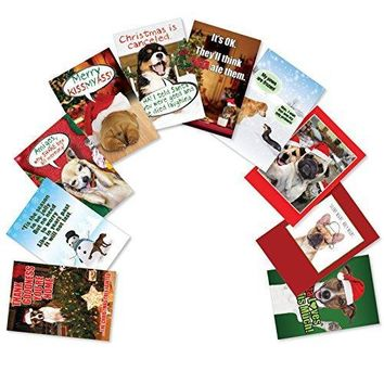10 Boxed 'PetiGtreet: Frozen Paws' Assorted Funny Christmas Cards w/Envelopes - Cute Dogs & Merry Xmas Greetings - Happy Holiday & Seasons Greetings Gift - 10 Different Card Designs