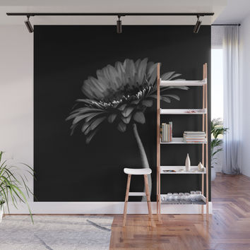 Daisy gerbera. Black and white Wall Mural by vanessagf