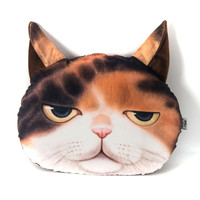 Sleepy Cat Face Cushion