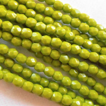 Lot of 50 3mm Opaque Olive Green Czech glass beads, firepolished, faceted round beads, C8401