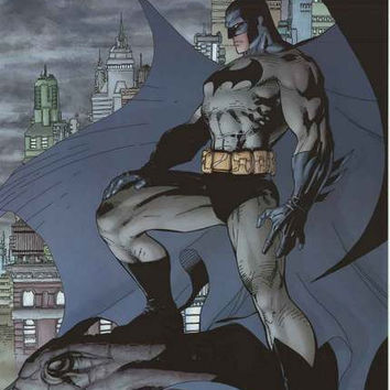 Batman Guardian of Gotham DC Comics Poster 22x34