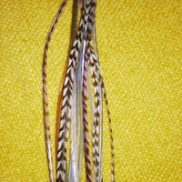 Sultry Mix// Feather Hair Extension by ChickenHeads on Etsy