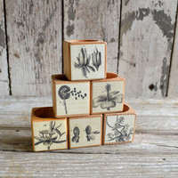 1 Reclaimed Wood Cobblestone Candle Block with Botanical Decoupage No. 2