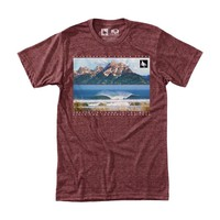 Apex Tee Heather Rust / HippyTree