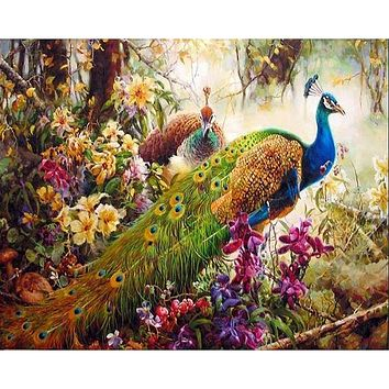 Frameless Peacock Animals DIY Digital Painting By Numbers Classical Home Decoration Wall Art Picture For Living Room Artwork
