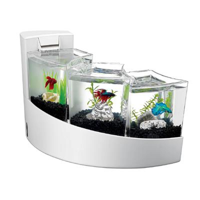 Aqueon betta falls 3 chamber aquarium from gotpetsupplies for 2 gallon betta fish tank