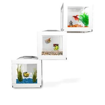 Set of 3 CubeAquarium for decoration or perfect as betta fish tank