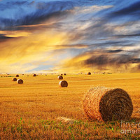 Golden Sunset Over Farm Field With Hay Bales Photograph by Elena Elisseeva - Golden Sunset Over Farm Field With Hay Bales Fine Art Prints and Posters for Sale