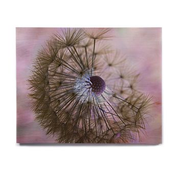 "Alison Coxon ""Dandelion Clock"" Birchwood Wall Art"
