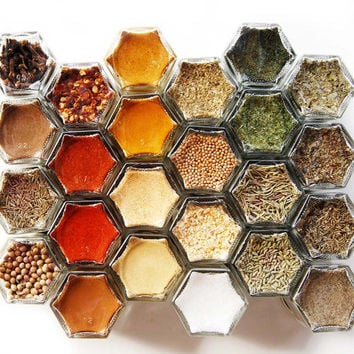 EVERYTHING Spice Kit: 24 ORGANIC Spices. Hand-Stamped Magnetic Spice Rack (1.5 oz jars). Free Shipping USA.
